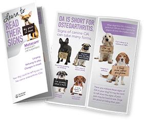 Pet owner brochure
